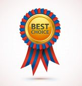 Vector best choice award.