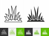 Grass Black Linear And Silhouette Icons. Thin Line Sign Of Bush. Organic Plant Outline Pictogram Iso poster