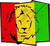 stock photo of lions-head  - Reggae background - JPG