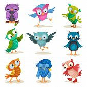 Cute Colorful Owlets Set, Sweet Owl Birds Cartoon Characters Vector Illustrations On A White Backgro poster