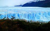 Amazing View Of Perito Moreno Glacier With The Viewing Balcony And Fall Foliage, Los Glaciares Natio poster
