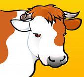 Cow Head in vectors