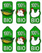 Bio Labels  / Fish, Beef, Chicken
