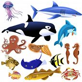 picture of dory  - sea animals - JPG
