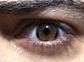 Soccer Eye