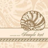 Vintage card with hand drawn shell