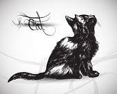 hand drawn cat high quality vector