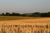 image of gleaning  - Stubble Field in Germany with windmill in the background - JPG