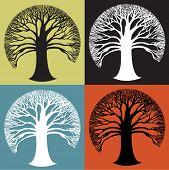 Grande rodada árvore ícone austero preto e branco