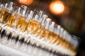 stock photo of champagne glasses  - A row of champagne glasses - JPG