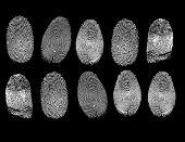 Raster set of fingerprints
