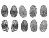Raster set of fingerprints