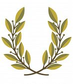 Laurel wreath ? vector illustration.