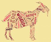 Textcloud: silhouette of goat