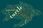Textcloud: silhouette of turtle