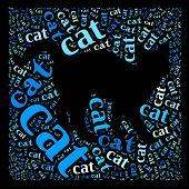 Cat of words