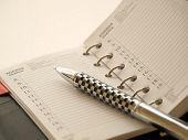 Agenda Calendar With Pen