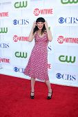 LOS ANGELES - JUL 29:  Pauley Perrette arrives at the CBS, CW, and Showtime 2012 Summer TCA party at Beverly Hilton Hotel Adjacent Parking Lot on July 29, 2012 in Beverly Hills, CA