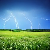 Lightning in meadow. Nature composition.