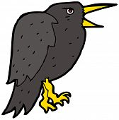 squawking crow cartoon