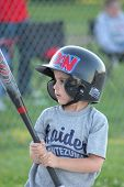 Boy Looking At Baseball Bat.