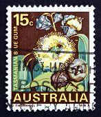 Postage Stamp Australia 1968 Tasmanian Blue Gum, Tree