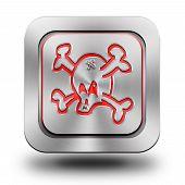 Skull Aluminum Glossy Icon, Button