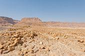 Noon In Desert