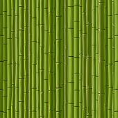 image of stockade  - Seamless cartoon background of green wall from bamboo - JPG