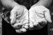 picture of beggar  - Old female hands in black and white - JPG