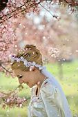 Cherry Blossom Shower Over Bride