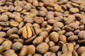Granos de café oscuro y oro