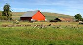 Red Barn In A Farm Eastern Washington.