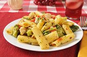 Chicken On Rigatoni With Garlic Olive Oil Sauce