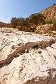 Stones In Desert