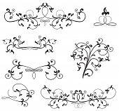 Ornate Floral Elements
