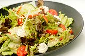 Healthy green salad on the black plate