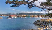 Historic Monterey Harbor and Marina