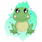 picture of amphibious  - a very cute little smiling frog in the rain - JPG