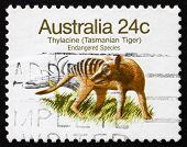 Postage Stamp Australia 1981 Tasmanian Tiger, Extinct Animal