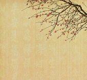 Spring plum blossom blossom on Old antique vintage paper background