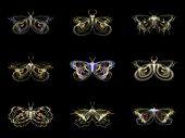 Visualization Of Fractal Butterflies