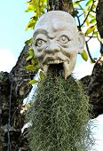 Devil Head At White Temple