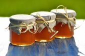 wooden honey dipper and jars full of delicious fresh honey in apiary