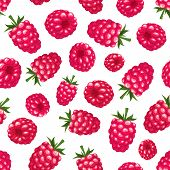 Seamless background with raspberry. Vector illustration.