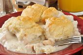 picture of biscuits gravy  - chicken and gravy on a bed of mashed potatoes topped with golden flakey biscuits