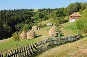 rural area of Kamena Gora Mountain, Serbia