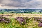 Rothbury In Coquetdale