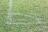 Football Field Corner
