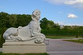 image of schoenbrunn  - Photo shows general view of statue in garden - JPG